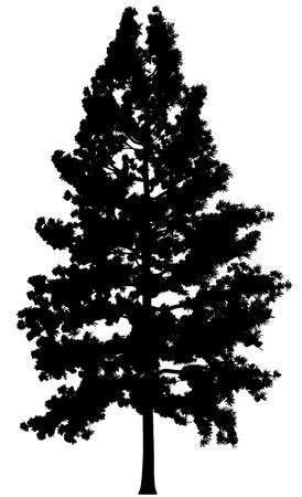 Tree Stock Vector - 7334419