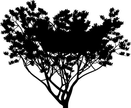 Tree Stock Vector - 7334304