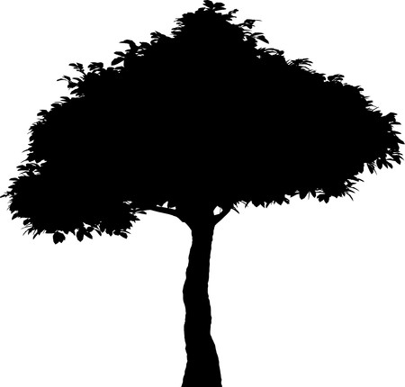 Tree   Stock Vector - 7334225