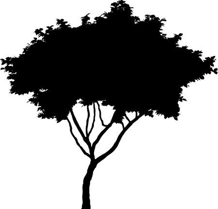 Tree   Stock Vector - 7334218