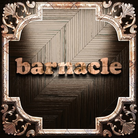 barnacle: word with classic ornament made in 3D Stock Photo