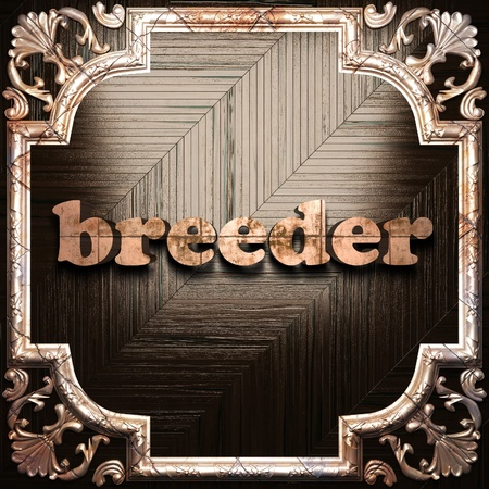 breeder: word with classic ornament made in 3D Stock Photo