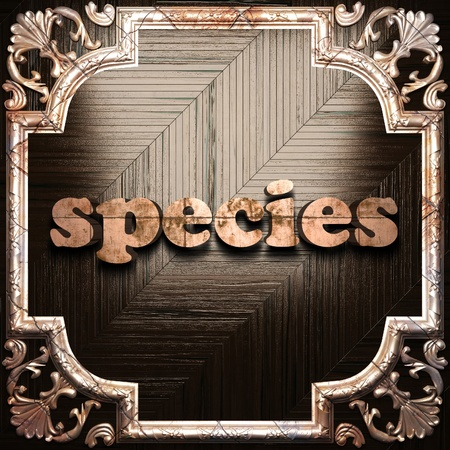 species plate: word with classic ornament made in 3D Stock Photo