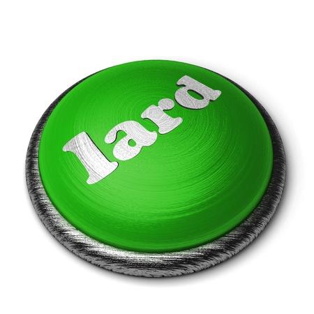 lard: Word on the button