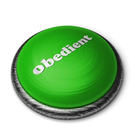 obedient: Word on the button