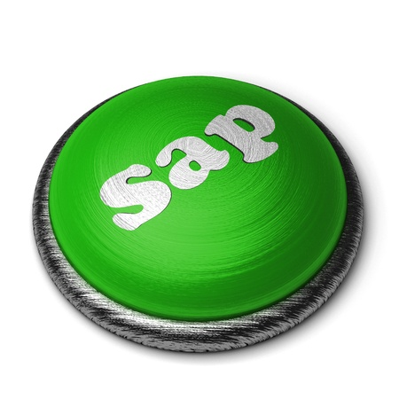 sap: Word on the button