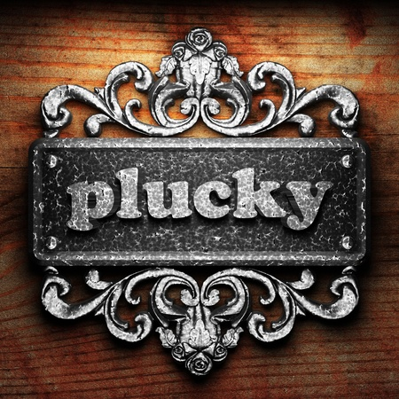 plucky: Silver word on ornament