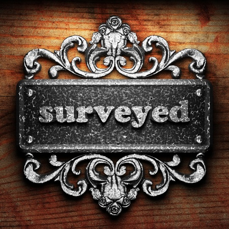surveyed: Silver word on ornament