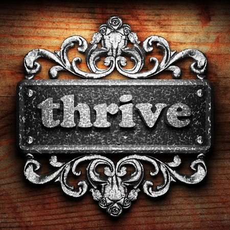 thrive: Silver word on ornament