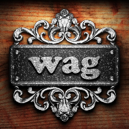 wag: Silver word on ornament