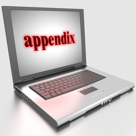 Word on laptop made in 3D Stock Photo - 13370833