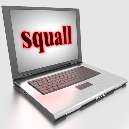 squall: Word on laptop made in 3D