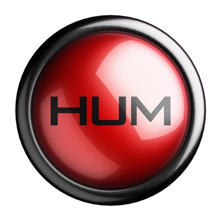 hum: Word on the button