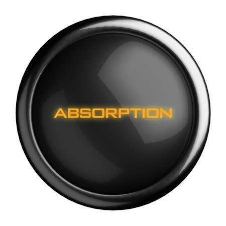 absorption: Word on black button