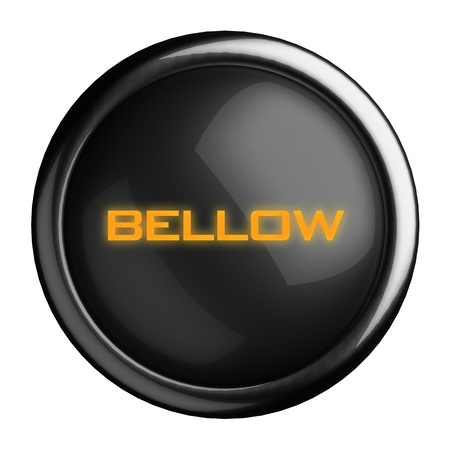 bellow: Word on black button
