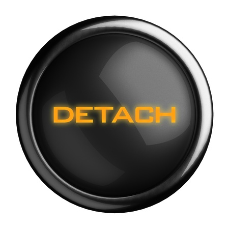 Word on black button Stock Photo - 15698587