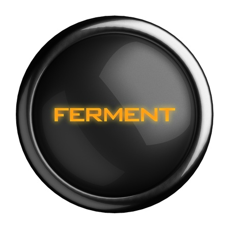ferment: Word on black button