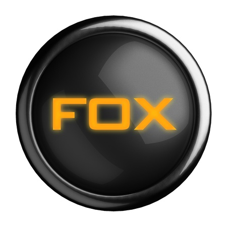silver fox: Word on black button