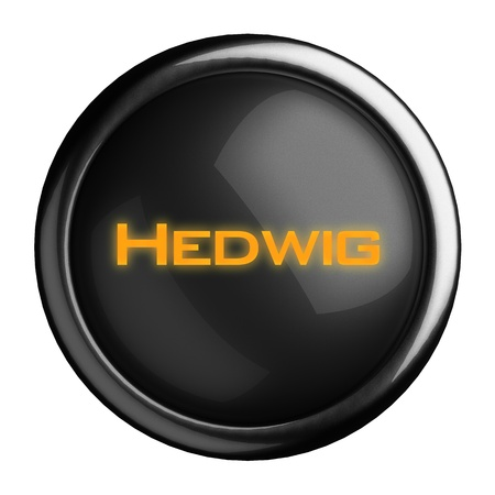 Word on black button Stock Photo - 15682372
