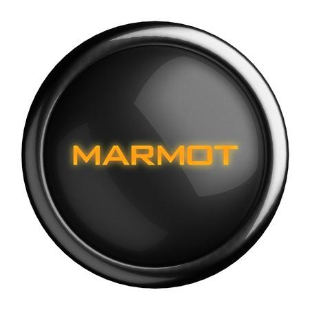 marmot: Word on black button