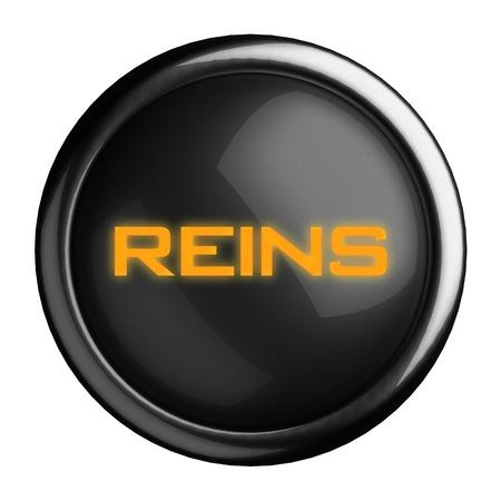 reins: Word on black button