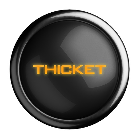 thicket: Word on black button