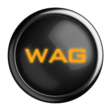 wag: Word on black button