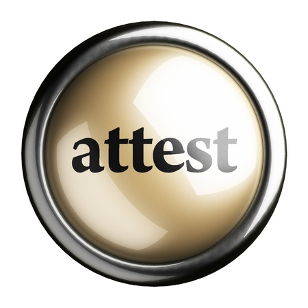 attest: Word on the button