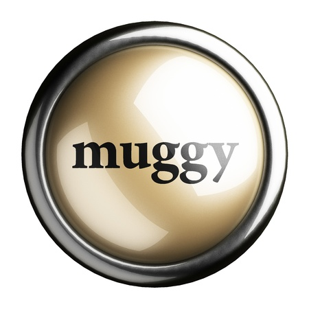 muggy: Word on the button