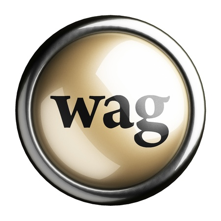 wag: Word on the button