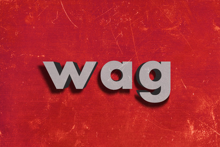 wag: gray word on red wall