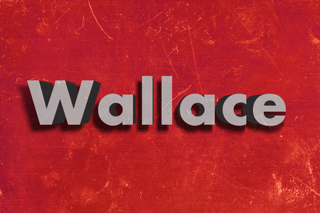 wallace: gray word on red wall