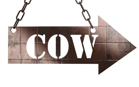 word on copper arrow photo