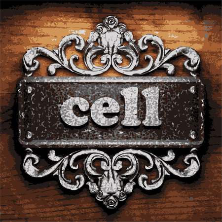 wall cell: vector iron word on wooden background