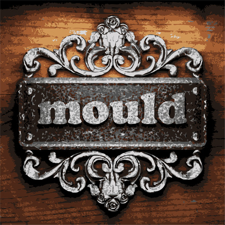 mould: vector iron word on wooden background
