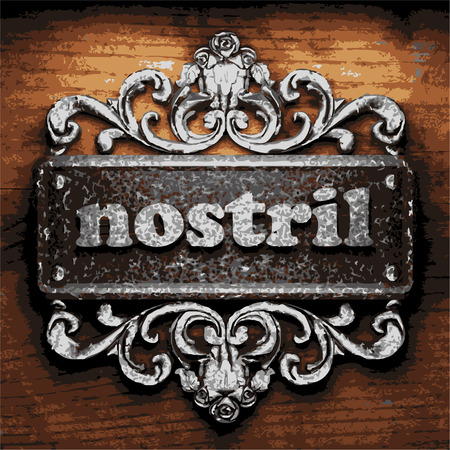 nostril: vector iron word on wooden background