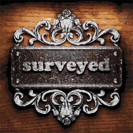 surveyed: vector iron word on wooden background