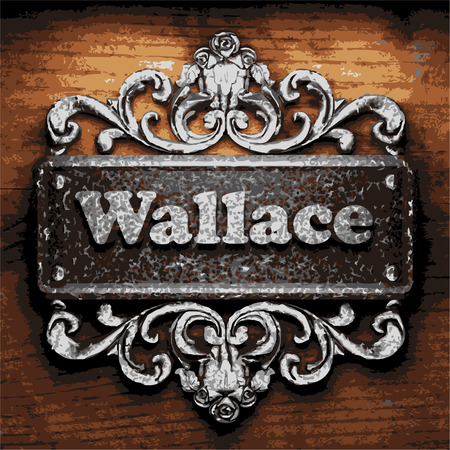 wallace: vector iron word on wooden background