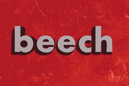 beech: beech vector word on red concrete wall
