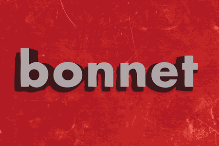 bonnet vector word on red concrete wall Illustration