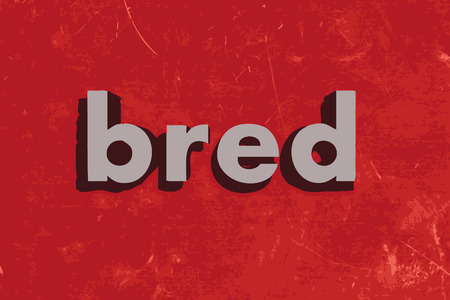 bred: bred vector word on red concrete wall