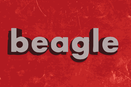 beagle: beagle vector word on red concrete wall Illustration