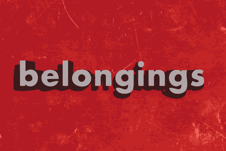 belongings vector word on red concrete wall Illustration