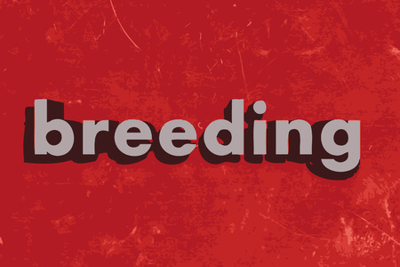 breeding: breeding vector word on red concrete wall Illustration