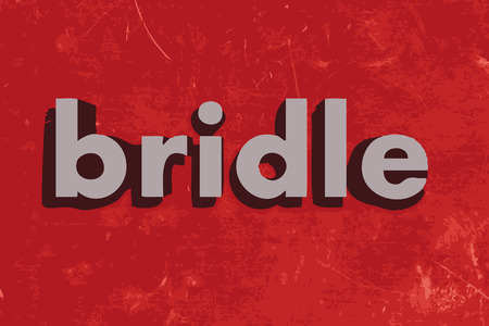 bridle: bridle vector word on red concrete wall