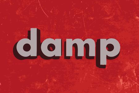 damp: umido parola vettore sul muro di cemento rosso
