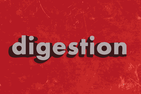 digestion: digestion vector word on red concrete wall Illustration