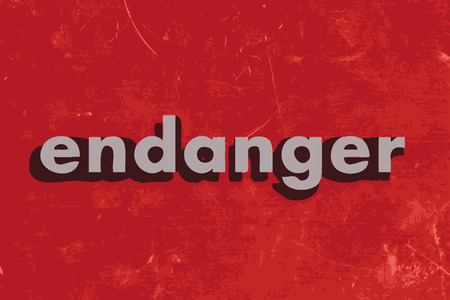 endanger: endanger vector word on red concrete wall Illustration