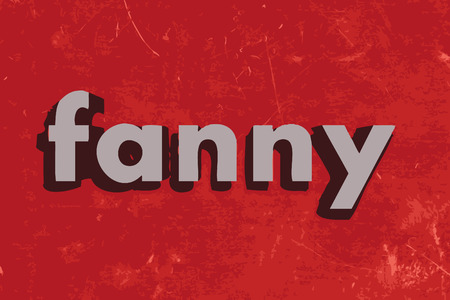 fanny: fanny vector word on red concrete wall