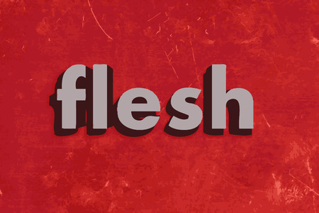 flesh: flesh vector word on red concrete wall
